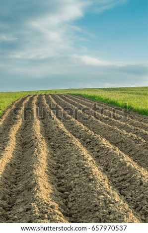Plowed brown field under blue sky
