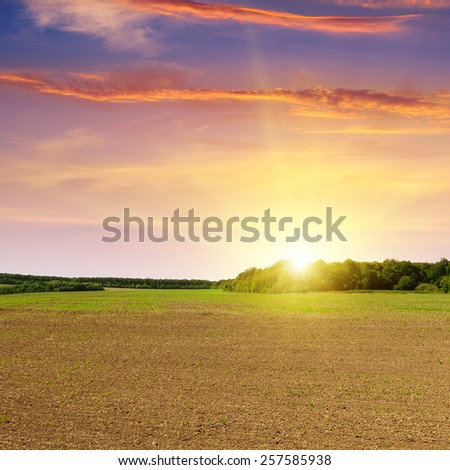 plowed field and beautiful sunset - stock photo