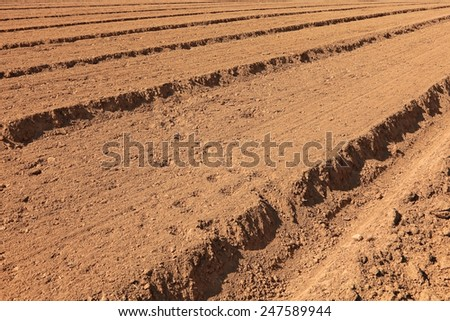 Plowed field background - stock photo
