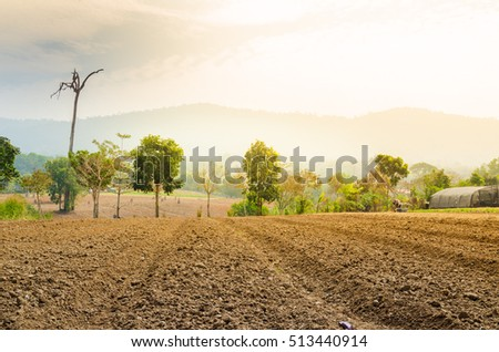 Plowed field farmland tillage for farming with soft warm light
