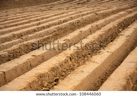 Plowed field in early autumn