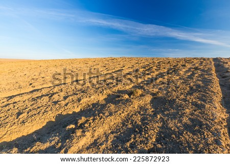 plowed field in golden light. rural landscape