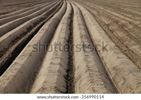 Plowed field in spring day - stock photo