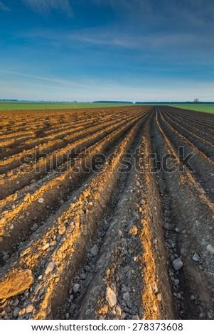 Plowed field landscape in calm polish countryside. Springtime landscape - stock photo