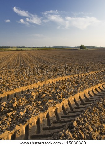 plowed field with tractor traces - stock photo