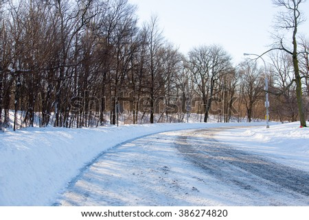 Plowed Road in Prospect Park - stock photo