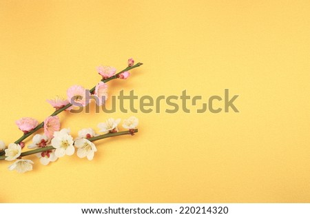 Plum flower - stock photo