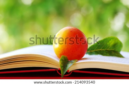 plum with leaves  on open book - stock photo