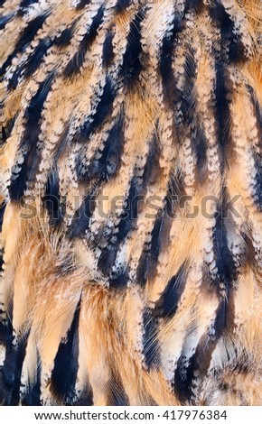 plumage background of eagle-owl closeup - stock photo