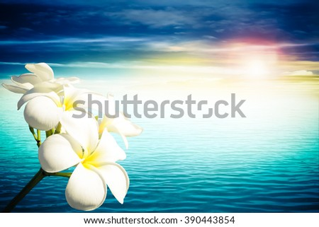 plumeria branch with flare light and ocean background