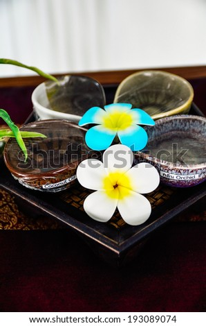 Plumeria flower for tropical spa concept essential oil - stock photo