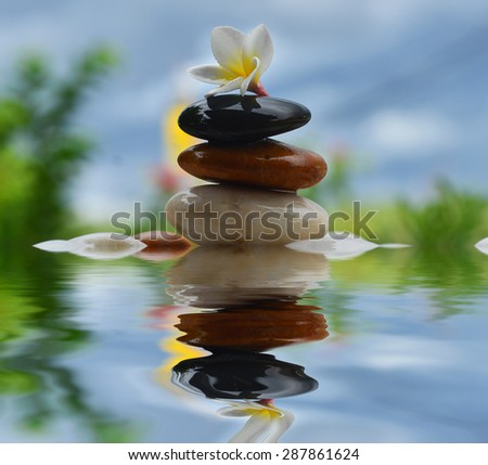 Plumeria Flower on Stones at Edge of Pool in Tranquil Spa Setting reflection in water. - stock photo