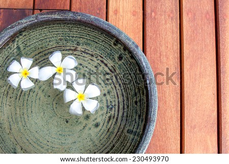 Plumeria flower on water in a clay jar.