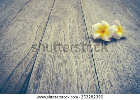 Plumeria on wooden floor. Space for design and color pastel. - stock photo