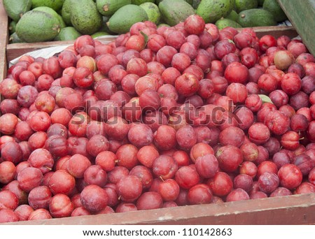Plums and Avocados on market - Prunus americana in San Jose, Costa Rica