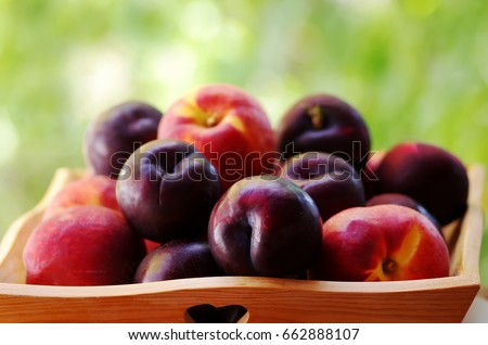 plums and peaches on wooden basket