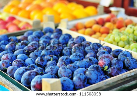 Plums on the market stand - stock photo