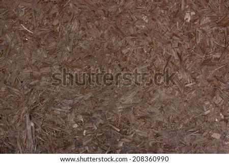 Plywood texture. - stock photo