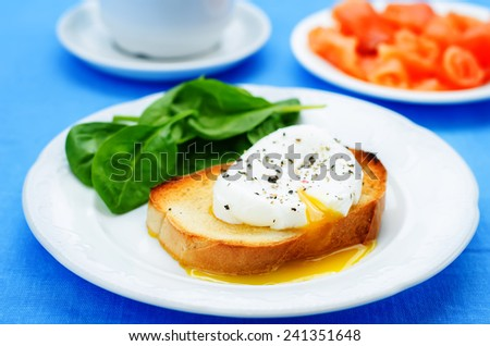 poached egg with salmon and spinach on a blue background. tinting. selective focus - stock photo