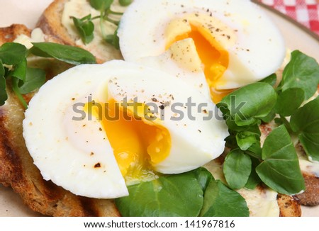 Poached eggs on toast with watercress