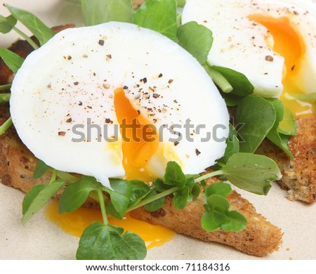 Poached eggs on toast with watercress and pepper. - stock photo