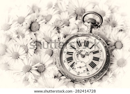 pocket watch in a beautiful romantic flowers, monochrome version - stock photo
