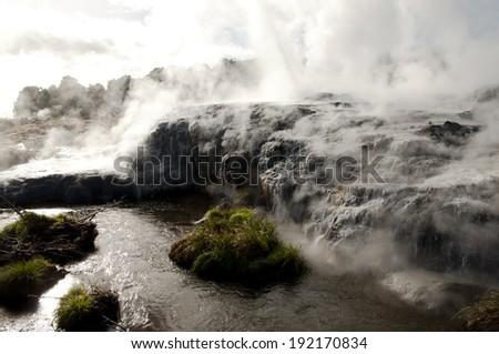 Pohutu Geyser - Rotorua - New Zealand  - stock photo