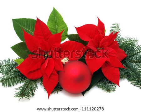Poinsettia flowers with christmas baubles - stock photo