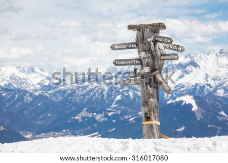 Pointer in Austrian Alps near Kitzbuehel in winter - stock photo