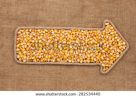 Pointer made from rope with grain corn  lying on sackcloth, with space for your text - stock photo