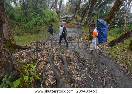 POKHARA - OCTOBER 26: people hike the Annapurna trail on October 26, 2014 in Pokhara region, Nepal. Trekking is not without dangers. Snowstorms have killed 39 trekkers earlier this year on 14 October.