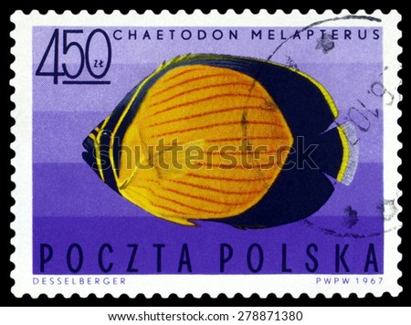POLAND - CIRCA 1967: A stamp printed in Poland, shows  fish  Black-eye butterflyfish, from the series Tropical fish, circa 1967  - stock photo