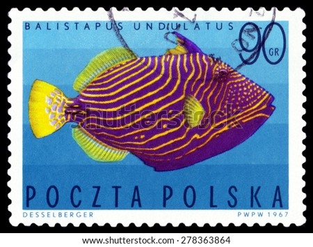POLAND - CIRCA 1967: A stamp printed in Poland, shows  fish  Undulate triggerfish, from the series Tropical fish, circa 1967  - stock photo