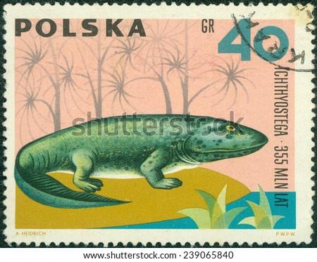 POLAND - CIRCA 1966: A stamp printed in Poland shows Ichthyostega from the series Dinosaurs, Prehistoric Vertebrates, circa 1966 - stock photo