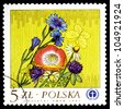 """POLAND - CIRCA 1982: A stamp printed in Poland shows image of a bouquet of colorful flowers, from the series """"Flowers"""", circa 1982 - stock photo"""