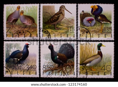 POLAND - CIRCA 1970: A stamp printed in Poland shows six kinds of field and home birds,circa 1970 - stock photo