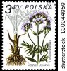 "POLAND - CIRCA 1980: A stamp printed in Poland shows Valeriana officinalis, with the same inscription, from the series ""Medical Plant"", circa 1980 - stock photo"