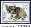 POLAND - CIRCA 1964: Postage stamp printed in Poland shows picture of a Black European Cat. J. Grabianski. Various European cats. Scott catalog 1225 A411 6.50z violet, circa 1964  - stock photo