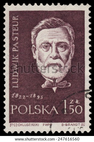 POLAND - CIRCA 1959: Stamp printed in Poland shows Louis Pasteur (1822-1895), circa 1959 - stock photo