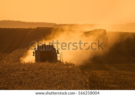 Poland harvest - stock photo