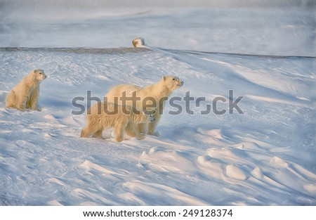 Polar bear and cubs, digital oil painting - stock photo