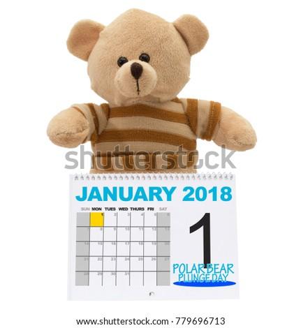 Polar Bear Plunge Day January 2018 Stock Photo (Royalty Free ...