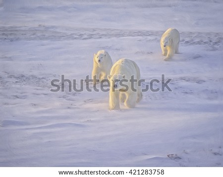 Polar bear with her cubs walking in Canadian Arctic. Low sunlight, Photo art