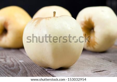 "Polish bright apple ""antonowka"" about the cream taste of shoot - stock photo"
