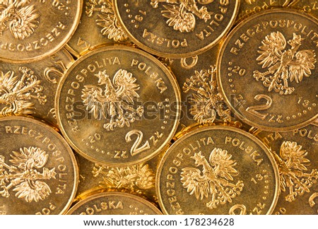 polish money and coins - stock photo