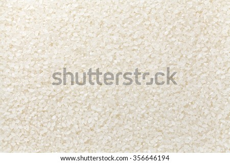 polished rice , koshihikari - stock photo