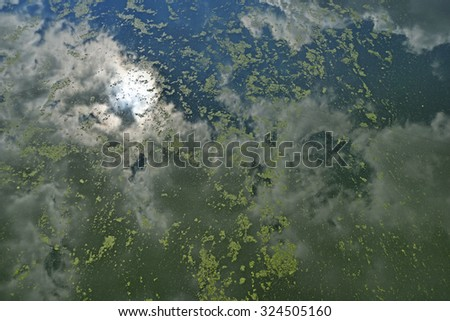 Polluted river - stock photo