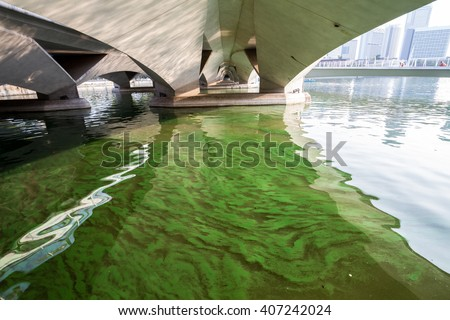 Polluted water - stock photo