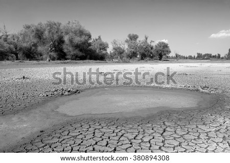 Polluted water and cracked soil of dried out lake during drought. - stock photo