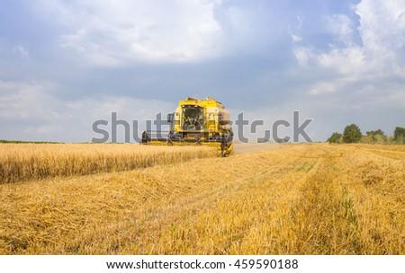 Polski Trambesh - June 23: harvester reaps the harvest of wheat and was attended storks against the blue sky with white clouds June 23, 2016, Polski Trambesh, Bulgaria